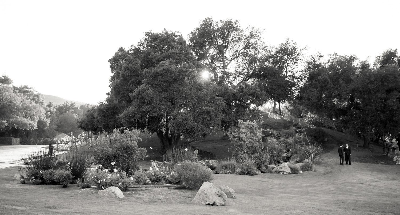 Landscape_1.jpg